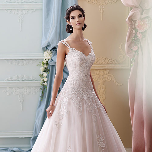 Bridal Collections Image